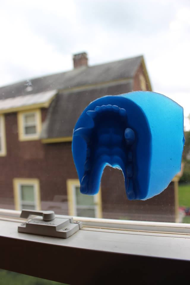 silicone rubber canine jawset
